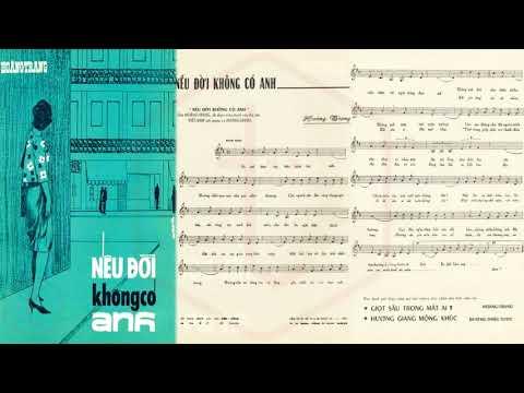 🎵 Nếu Đời Không Có Anh (Hoàng Trang) Hoàng Oanh Pre 1975 | Tờ Nhạc Xưa