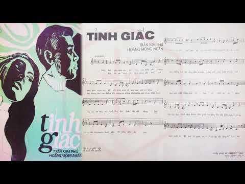 🎵 Tỉnh Giấc (Trần Kim Phú, Hoàng Mộng Ngân) Thanh Thúy Pre 1975 | Tờ Nhạc Xưa