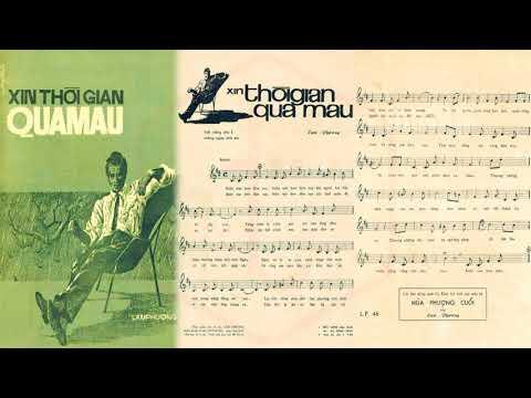 🎵 Xin Thời Gian Qua Mau (Lam Phương) Đức Minh Pre 1975 | Tờ Nhạc Xưa
