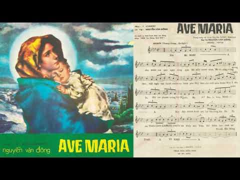 🎵 Ave Maria (Nguyễn Văn Đông) Thái Thanh Pre 1975 | Tờ Nhạc Xưa