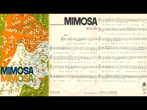 🎵 Mimosa (Trường Hải) Nhật Thiên Lan Pre 1975 | Tờ Nhạc Xưa