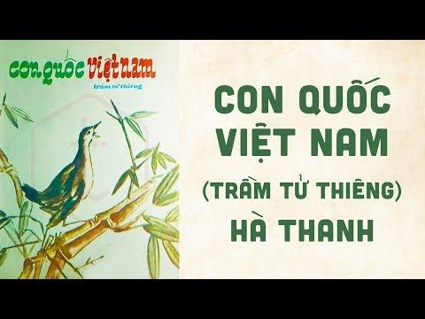 🎵 Con Quốc Việt Nam (Trầm Tử Thiêng) Hà Thanh Pre 1975 | Bìa Nhạc Xưa