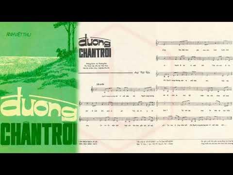 🎵 Đường Chân Trời (Anh Việt Thu) Phương Đại, Phương Hồng Quế Pre 1975 | Tờ Nhạc Xưa