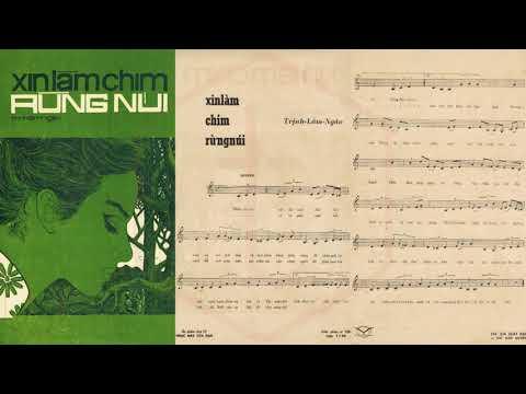 🎵 Xin Làm Chim Rừng Núi (Trịnh Lâm Ngân) Thanh Tuyền Pre 1975 | Tờ Nhạc Xưa