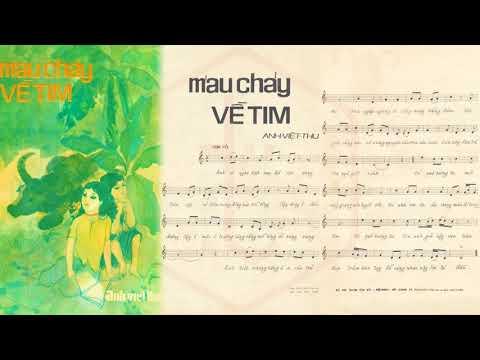 🎵 Máu Chảy Về Tim (Anh Việt Thu) Hà Thanh Pre 1975 | Tờ Nhạc Xưa