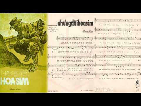 🎵 Những Đồi Hoa Sim (Dzũng Chinh, Hữu Loan) Băng Châu Pre 1975 | Tờ Nhạc Xưa