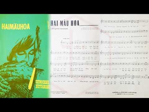 🎵 Hai Màu Hoa (Dzũng Chinh, Bùi Tuấn Anh) Thanh Thúy Pre 1975 | Tờ Nhạc Xưa