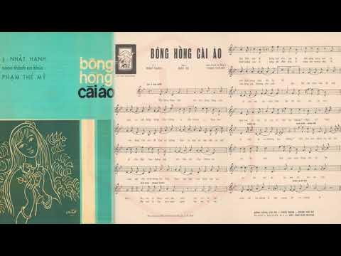 🎵 Bông Hồng Cài Áo (Phạm Thế Mỹ) Thanh Lan Pre 1975 | Tờ Nhạc Xưa