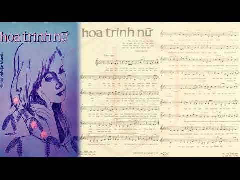 🎵 Hoa Trinh Nữ (Trần Thiện Thanh) Phương Dung Pre 1975 | Tờ Nhạc Xưa
