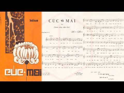 🎵 Cúc Và Mai (Hoài Nam) Trang Mỹ Dung Pre 1975 | Tờ Nhạc Xưa