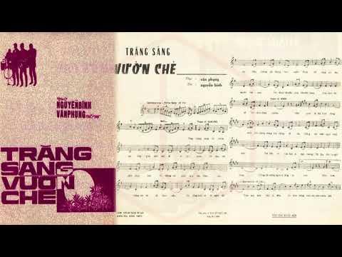 🎵 Trăng Sáng Vườn Chè (Văn Phụng, Nguyễn Bính) Ánh Tuyết Pre 1975 | Tờ Nhạc Xưa