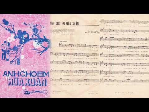 🎵 Anh Cho Em Mùa Xuân (Nguyễn Hiền, Kim Tuấn) Giao Linh Pre 1975 | Tờ Nhạc Xưa