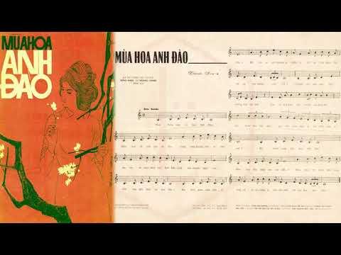 🎵 Mùa Hoa Anh Đào (Thanh Sơn) Hương Lan Pre 1975 | Tờ Nhạc Xưa
