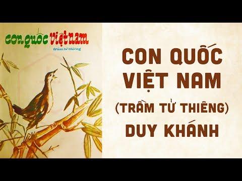 🎵 Con Quốc Việt Nam (Trầm Tử Thiêng) Duy Khánh Pre 1975 | Bìa Nhạc Xưa