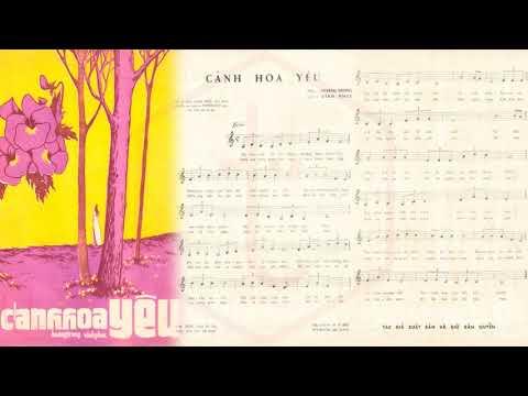 🎵 Cánh Hoa Yêu (Hoàng Trọng) Uyên Phương Pre 1975 | Tờ Nhạc Xưa