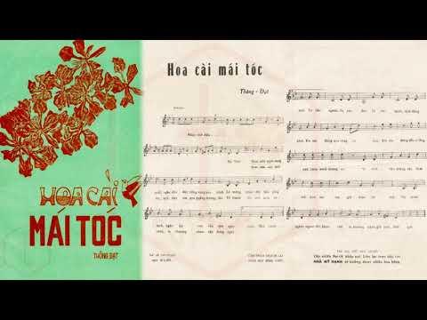 🎵 Hoa Cài Mái Tóc (Thông Đạt) Elvis Phương Pre 1975 | Tờ Nhạc Xưa