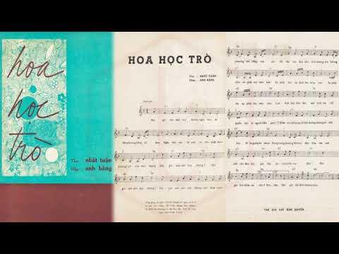 🎵 Hoa Học Trò (Anh Bằng, Nhất Tuấn) Nhật Trường, Hoàng Oanh Pre 1975 | Tờ Nhạc Xưa