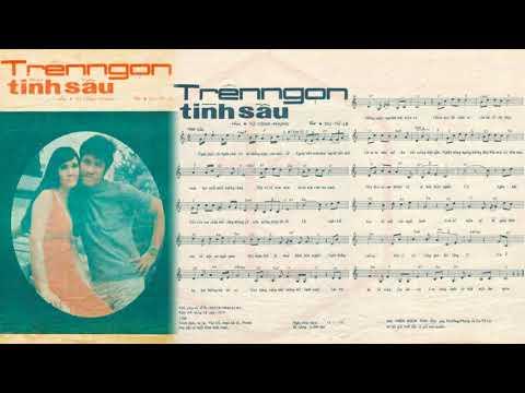 🎵 Trên Ngọn Tình Sầu (Từ Công Phụng, Du Tử Lê) Xuân Sơn Pre 1975 | Tờ Nhạc Xưa