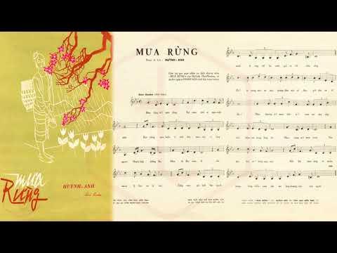 🎵 Mưa Rừng (Huỳnh Anh) Trường Hải Pre 1975 | Tờ Nhạc Xưa