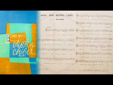 🎵 Bóng Nhỏ Đường Chiều (Trúc Phương) Giao Linh Pre 1975 | Tờ Nhạc Xưa