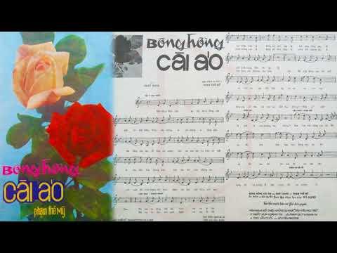 🎵 Bông Hồng Cài Áo (Phạm Thế Mỹ) Nhật Trường Pre 1975 | Tờ Nhạc Xưa