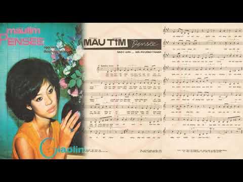 🎵 Màu Tím Pensée (Ngọc Sơn, Đài Phương Trang) Giao Linh Pre 1975 | Tờ Nhạc Xưa