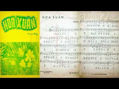 🎵 Hoa Xuân (Phạm Duy) Thái Thanh Pre 1975 | Tờ Nhạc Xưa