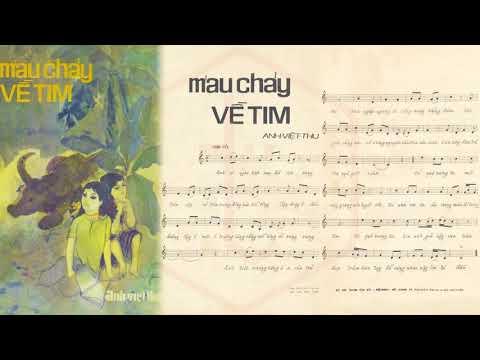 🎵 Máu Chảy Về Tim (Tân Cổ, Anh Việt Thu, Loan Thảo) Minh Cảnh, Mỹ Châu Pre 1975 | Tờ Nhạc Xưa