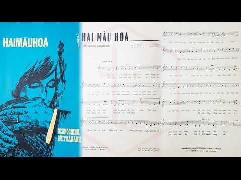 🎵 Hai Màu Hoa (Dzũng Chinh, Bùi Tuấn Anh) Hoàng Oanh Pre 1975 | Tờ Nhạc Xưa