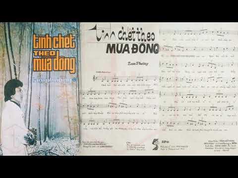 🎵 Tình Chết Theo Mùa Đông (Lam Phương) Chế Linh Pre 1975 | Tờ Nhạc Xưa