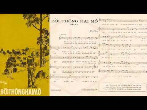 🎵 Đồi Thông Hai Mộ (Hồng Vân) Dạ Hương Pre 1975 | Tờ Nhạc Xưa