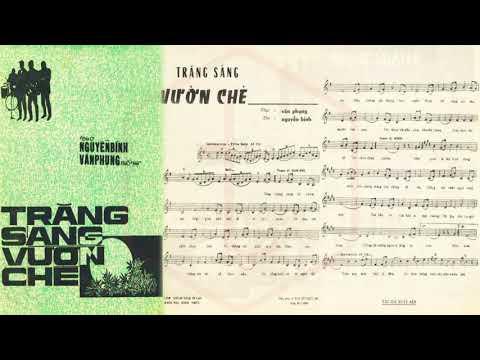 🎵 Trăng Sáng Vườn Chè (Văn Phụng, Nguyễn Bính) Xuân Sơn Pre 1975 | Tờ Nhạc Xưa