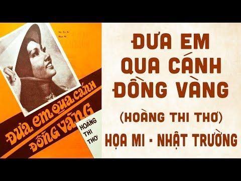 🎵 Đưa Em Qua Cánh Đồng Vàng (Hoàng Thi Thơ) Họa Mi, Nhật Trường Pre 1975 | Bìa Nhạc Xưa