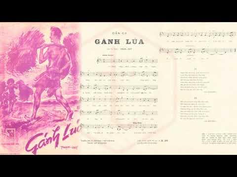 🎵 Gánh Lúa (Phạm Duy) Minh Trang, Thái Hằng Pre 1975 | Tờ Nhạc Xưa