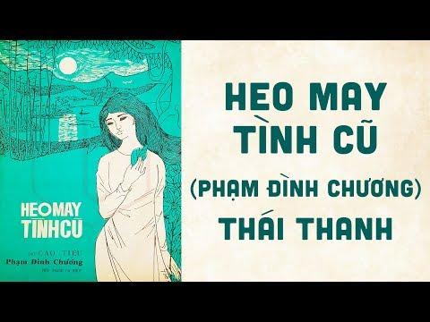 🎵 Heo May Tình Cũ (Cao Tiêu, Phạm Đình Chương) Thái Thanh Pre 1975 | Bìa Nhạc Xưa
