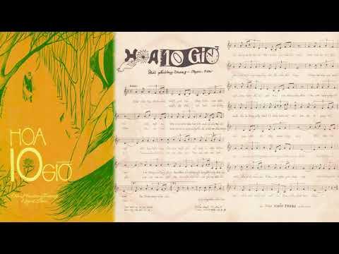 🎵 Hoa 10 Giờ (Đài Phương Trang, Ngọc Sơn) Yến Linh Pre 1975 | Tờ Nhạc Xưa