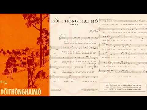 🎵 Đồi Thông Hai Mộ (Hồng Vân) Hoàng Oanh Pre 1975 | Tờ Nhạc Xưa
