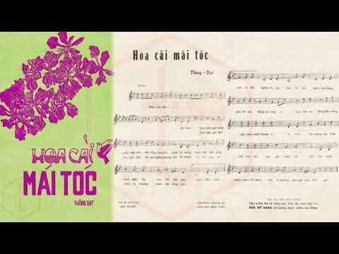 🎵 Hoa Cài Mái Tóc (Thông Đạt) Trúc Mai Pre 1975 | Tờ Nhạc Xưa