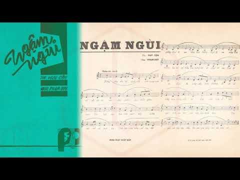 🎵 Ngậm Ngùi (Phạm Duy, Huy Cận) Lệ Thu Pre 1975 | Tờ Nhạc Xưa