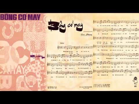 🎵 Bông Cỏ May (Trúc Phương) Duy Khánh Pre 1975 | Tờ Nhạc Xưa