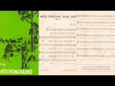 🎵 Đồi Thông Hai Mộ (Hồng Vân) Phương Dung Pre 1975 | Tờ Nhạc Xưa
