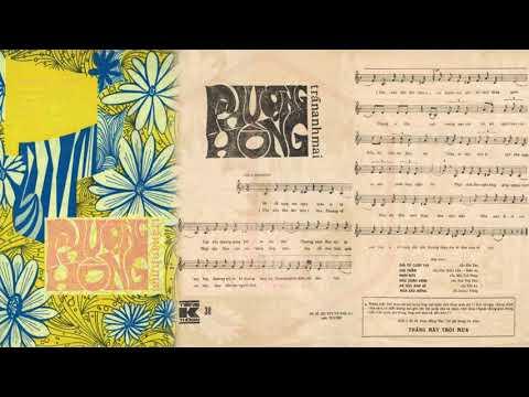 🎵 Phượng Hồng (Trần Anh Mai) Hoàng Oanh Pre 1975   Tờ Nhạc Xưa