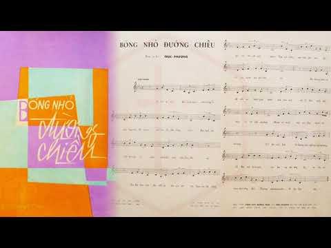 🎵 Bóng Nhỏ Đường Chiều (Trúc Phương) Thanh Thúy Pre 1975 | Tờ Nhạc Xưa