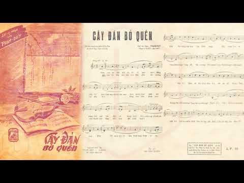 🎵 Cây Đàn Bỏ Quên (Phạm Duy) Elvis Phương Pre 1975 | Tờ Nhạc Xưa