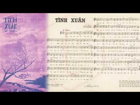 🎵 Tình Xuân (Vũ Thành) Duy Trác Pre 1975 | Tờ Nhạc Xưa