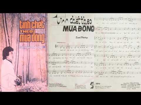 🎵 Tình Chết Theo Mùa Đông (Lam Phương) Thái Châu Pre 1975 | Tờ Nhạc Xưa