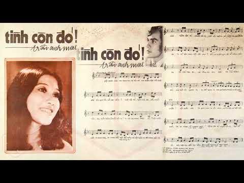 🎵 Tình Còn Đó (Trần Anh Mai) Thái Châu Pre 1975 | Tờ Nhạc Xưa