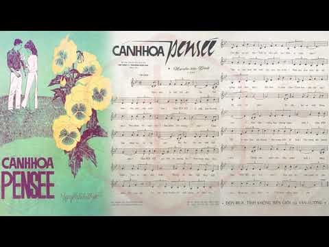 🎵 Cánh Hoa Pensée (Nguyễn Hữu Thiết) Phương Hoài Tâm Pre 1975 | Tờ Nhạc Xưa