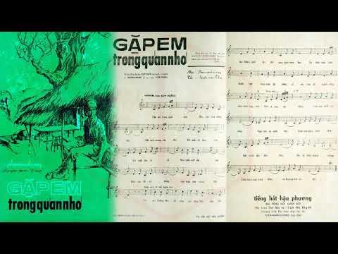 🎵 Gặp Em Trong Quán Nhỏ (Phạm Mạnh Cương) Giao Linh Pre 1975 | Tờ Nhạc Xưa
